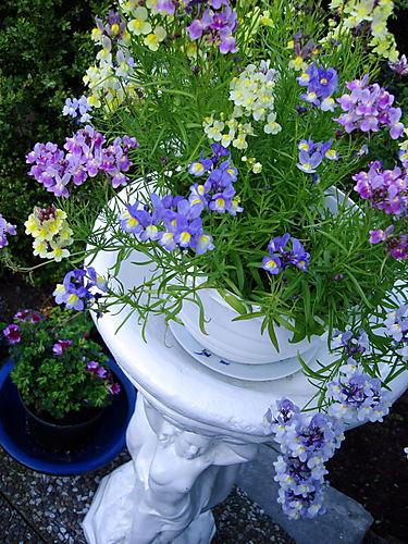 Flowers on statue vase