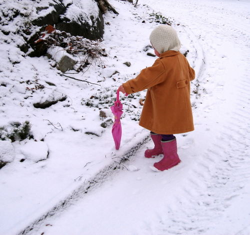 Liilly in snow2