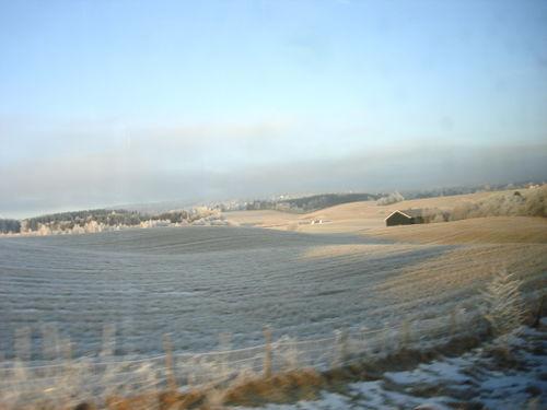 Frosty white trip