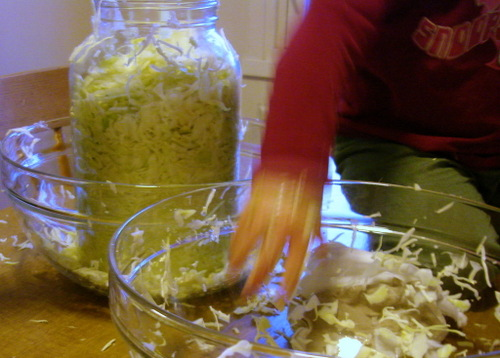 Table_top_chef_making_sourkraut