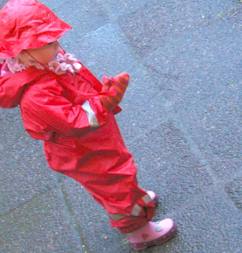 Lilly_in_rain_2
