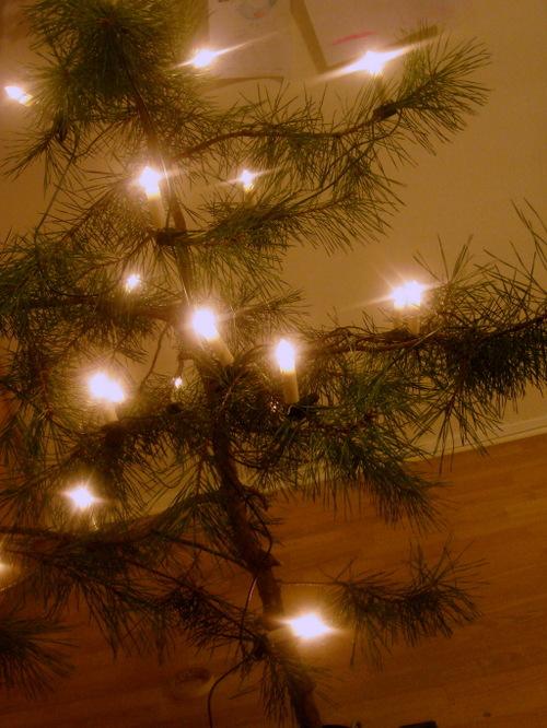 Christmas_tree_2007