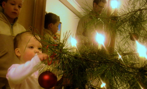 Decorating_the_tree_2007