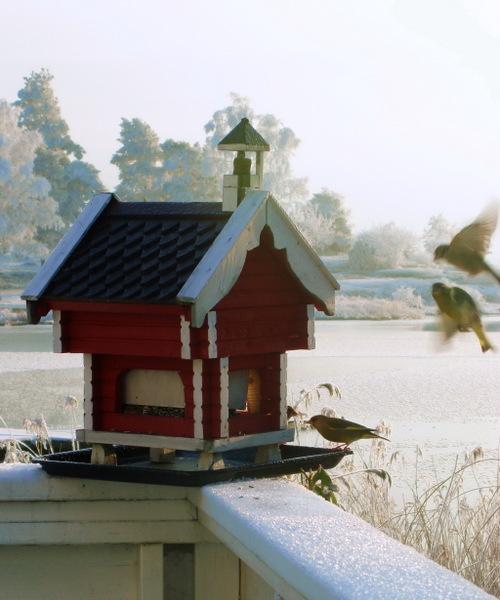 Birdhouse_resized
