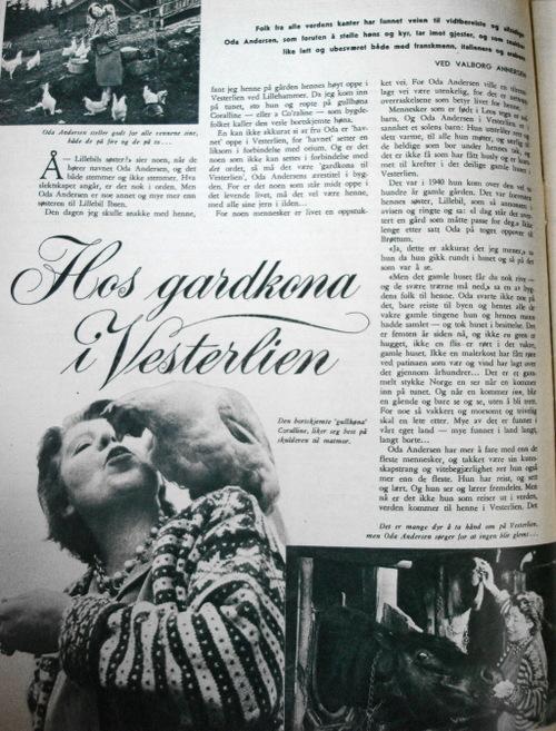 Vntage_magazine2